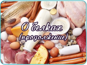 o_belkah1