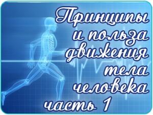 o_dvijenii1