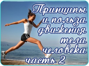 o_dvijenii2
